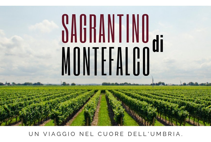 A JOURNEY INTO THE WORLD OF SAGRANTINO – MONTEFALCO