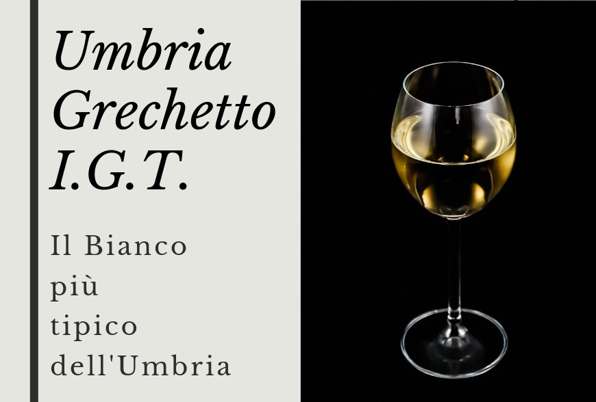 UMBRIA GRECHETTO – THE MOST TYPICAL WHITE WINE OF UMBRIA