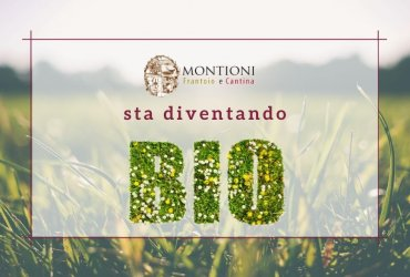 The Azienda Agricola Montioni goes towards organic farming!